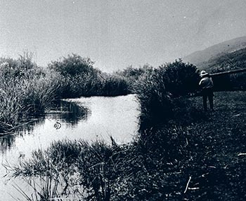 The Yagur swamp before its drying (1924)